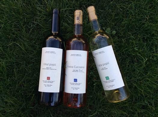 """Primele trei vinuri din colecția """"Beciul popii"""" pot fi găsite acum și la Librăria Sophia din București"""